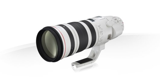 Canon 200-400 EF 200-400mm f4L IS USM Extender 1.4x